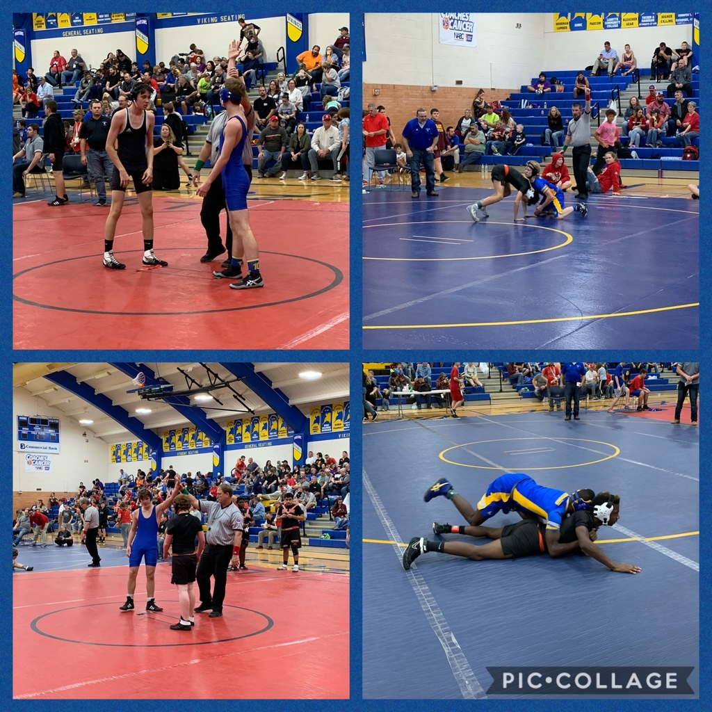 MS Viking Wrestling